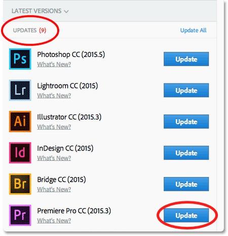 import DJI HEVC to Premiere Pro