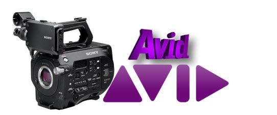 import and edit Sony XAVC S MP4 files in Avid
